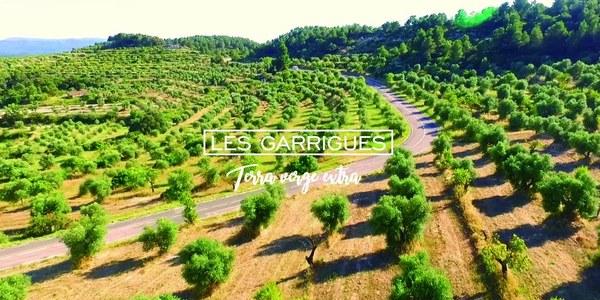 Les Garrigues, Terra verge extra